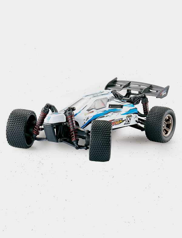 Awesome RC Cars Scale buggy car